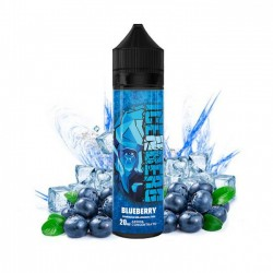 Efinity Labs - Icenberg - Scomposto 20ml - Blueberry 2rshop.it svapo