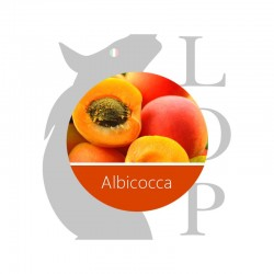 ALBICOCCA - AROMA CONCENTRATO - LOP 10 ML 2rshop.it svapo
