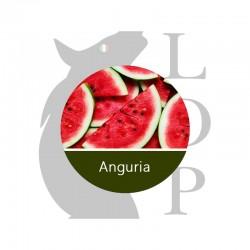 ANGURIA - AROMA CONCENTRATO - LOP 10 ML 2rshop.it svapo