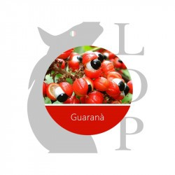 GUARANA' - AROMA CONCENTRATO - LOP 10 ML 2rshop.it svapo